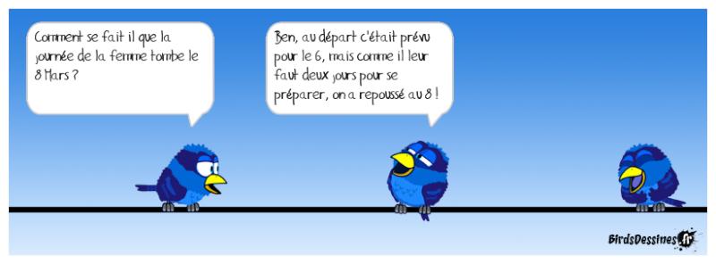 Quelques Birds ? Pas_d_21