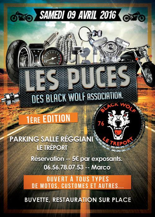 LES PUCES DES BLACK WOLF 12742610