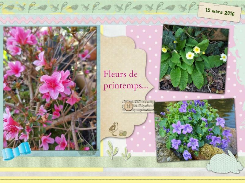 Vous avez dit printemps ...... ??? Fleurs10