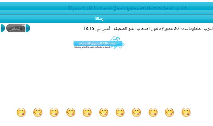خبر: ما سر استحواذ العضو wassim dimaria على المساهمات الاخيرة  Screen12