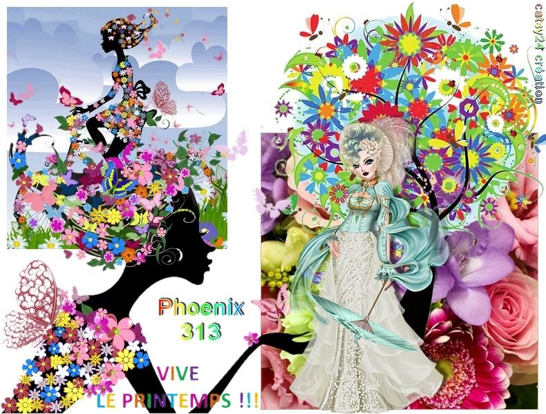 Phoenix313 bienvenue! Phoeni10