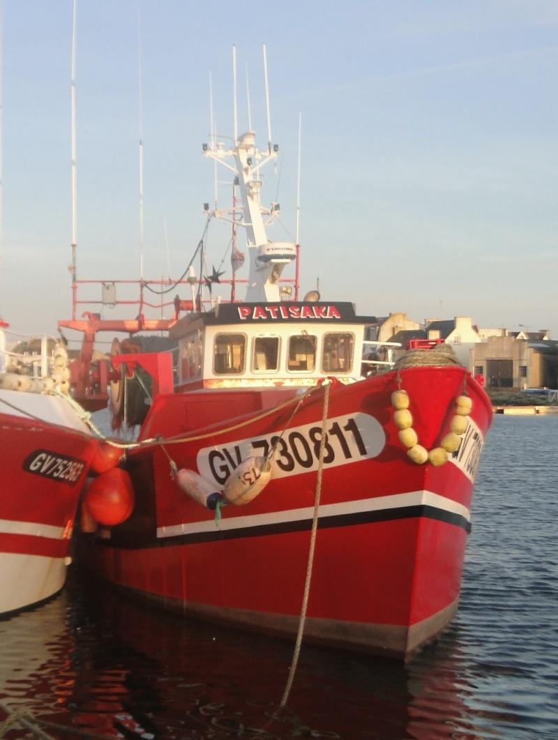 [VIE DES PORTS] Quelques bateaux de pêche (sur nos côtes Françaises) - Page 22 Patisa10