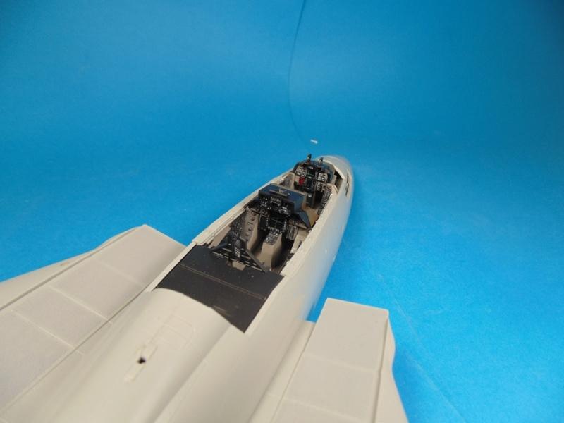 f14B bombcat  trumpeter 1/32  - Page 2 Dsc02458