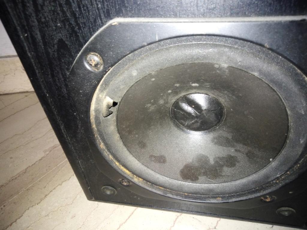 Speakers 2  Img_2010