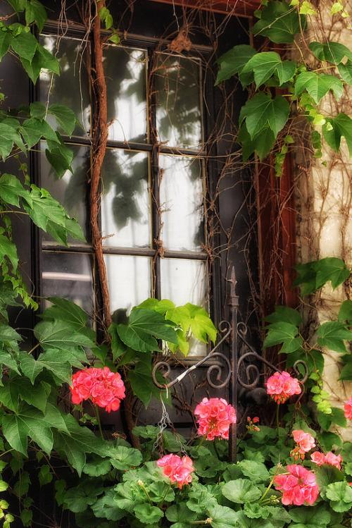 Des fenêtres d'hier et d'aujourd'hui. - Page 38 Fen_z10
