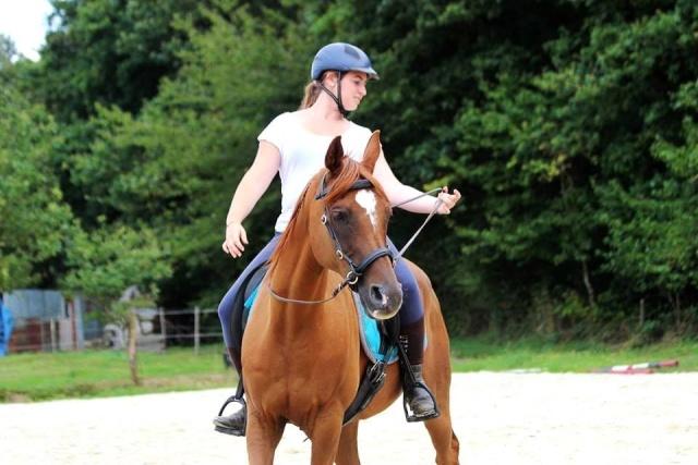 L'équitation sans mors - Page 4 10599310