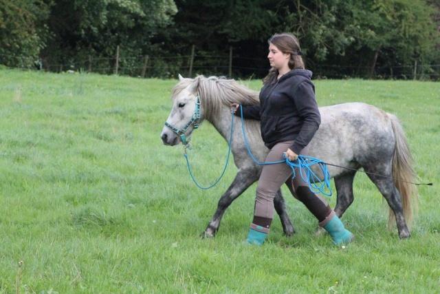 L'équitation sans mors - Page 4 11231010
