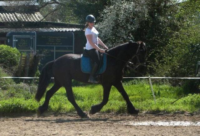 L'équitation sans mors - Page 4 13977_10
