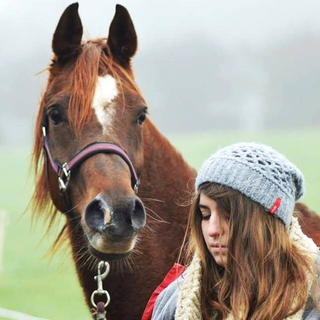 L'équitation sans mors - Page 4 15388410