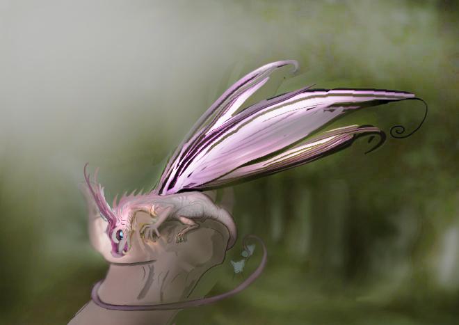 Dragon fée papillon [cyclopkilouch] Dragon10