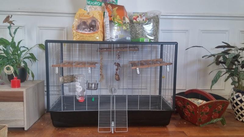 Vends cage SAVIC zeno knock  20160211
