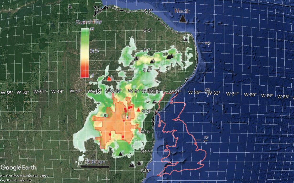 [Recherche d'endroits] Elle est où???  _  La termitière du Brésil. Brzosi10
