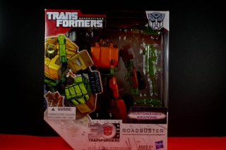 Transformers GENERATIONS  - HASBRO Imgp9212