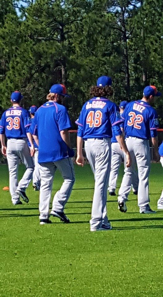 2016 Mets Season  12734010