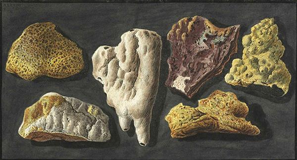 Le Vésuve, décrit par les contemporains du XVIIIe siècle P_fabr10
