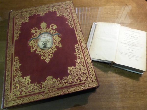 Le Vésuve, décrit par les contemporains du XVIIIe siècle Willia12