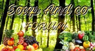 Soup&Co Moulinex - Communauté de partage de recettes Soup2311