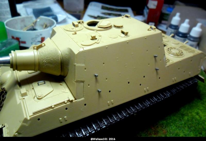 Jagdtiger Sd.Kfz.186 Tamiya, Aber, RB Model 1/35 Disposition??? - Page 6 Sam_1570