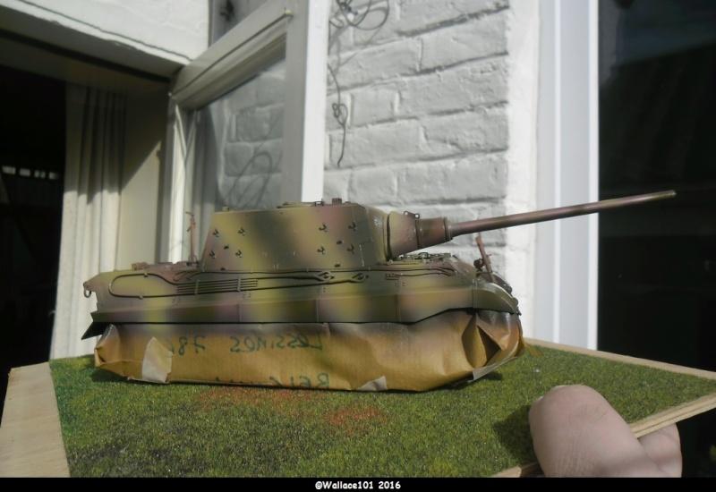 Jagdtiger Sd.Kfz.186 Tamiya, Aber, RB Model 1/35 Disposition??? - Page 9 Sam_1660