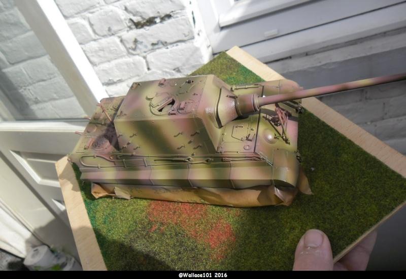 Jagdtiger Sd.Kfz.186 Tamiya, Aber, RB Model 1/35 Disposition??? - Page 9 Sam_1661