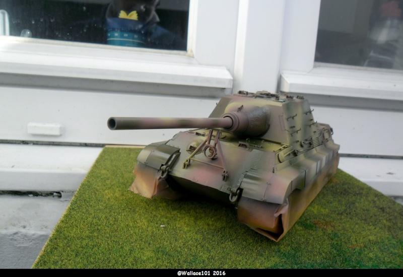 Jagdtiger Sd.Kfz.186 Tamiya, Aber, RB Model 1/35 Disposition??? - Page 9 Sam_1662