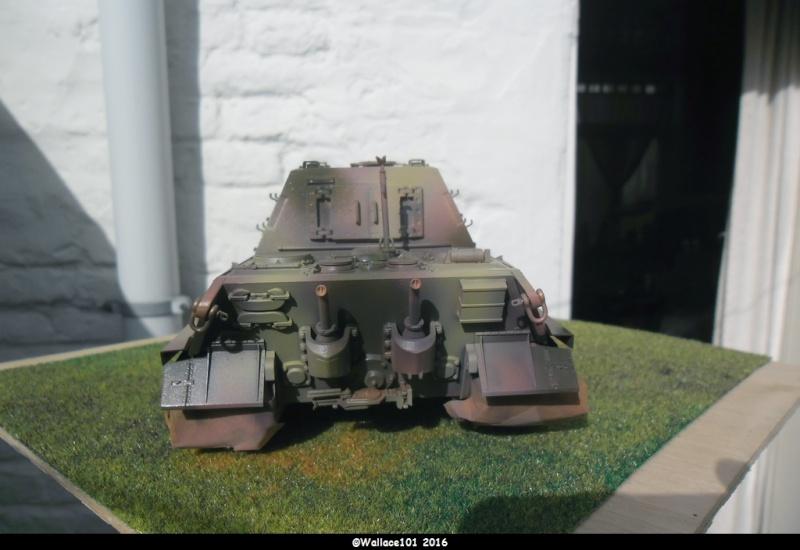Jagdtiger Sd.Kfz.186 Tamiya, Aber, RB Model 1/35 Disposition??? - Page 9 Sam_1663