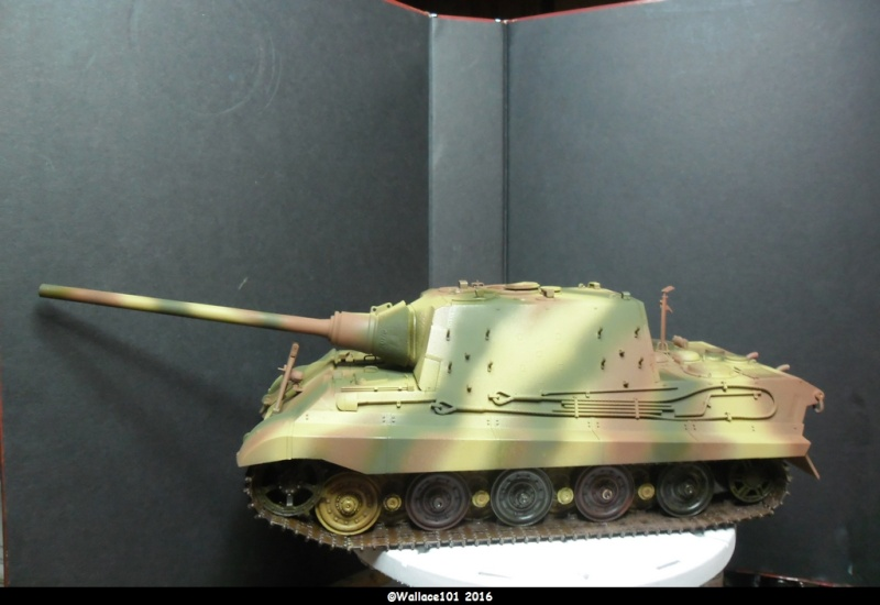 Jagdtiger Sd.Kfz.186 Tamiya, Aber, RB Model 1/35 Disposition??? - Page 11 Sam_1670