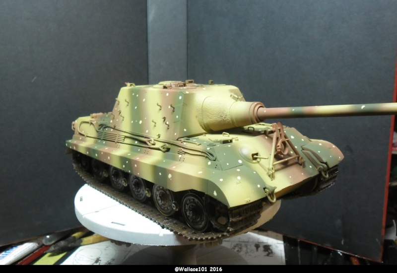 Jagdtiger Sd.Kfz.186 Tamiya, Aber, RB Model 1/35 Disposition??? - Page 11 Sam_1673