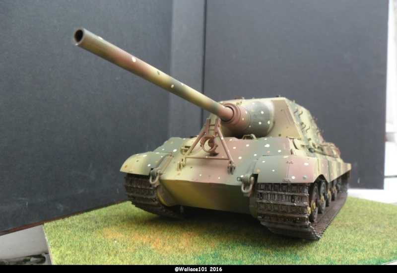 Jagdtiger Sd.Kfz.186 Tamiya, Aber, RB Model 1/35 Disposition??? - Page 11 Sam_1676