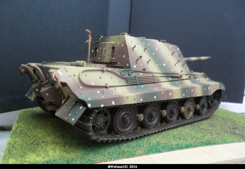 Jagdtiger Sd.Kfz.186 Tamiya, Aber, RB Model 1/35 Disposition??? - Page 11 Sam_1677