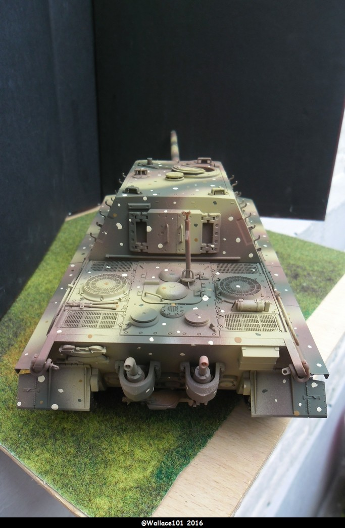 Jagdtiger Sd.Kfz.186 Tamiya, Aber, RB Model 1/35 Disposition??? - Page 11 Sam_1678