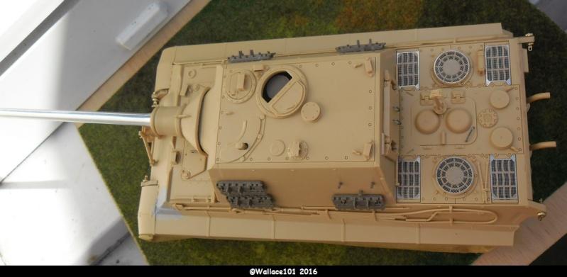 Jagdtiger Sd.Kfz.186 Tamiya, Aber, RB Model 1/35 Disposition??? - Page 8 Sans_t25