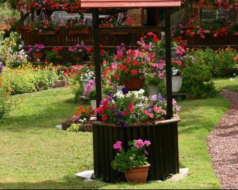 Vrtne biljke                        11054410