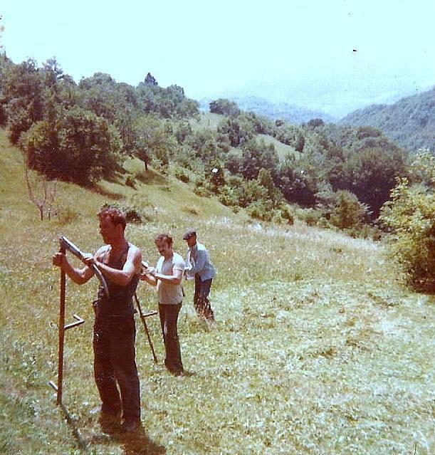 Agrar & selo u sjeni prošlosti - Page 2 11825610