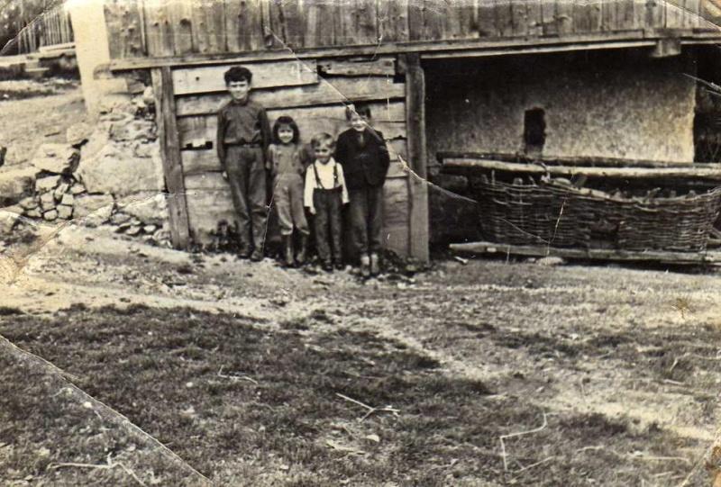 Agrar & selo u sjeni prošlosti - Page 2 42774510