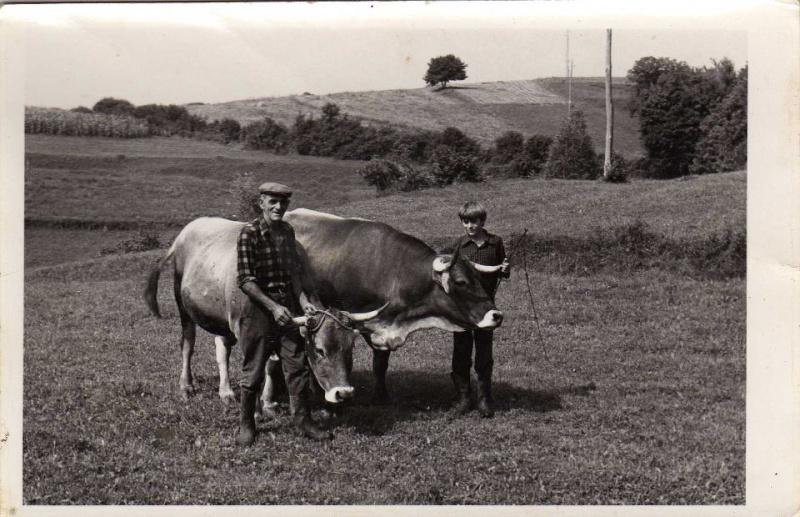 Agrar & selo u sjeni prošlosti - Page 2 42984810