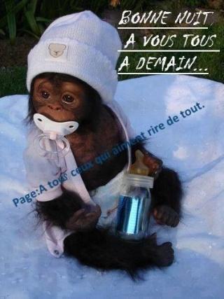 LES BONSOIRS DU SOIR  - Page 5 12705610