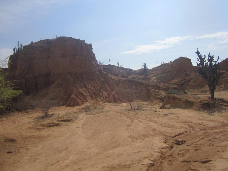 chewbacca en amerique du sud Img_5112