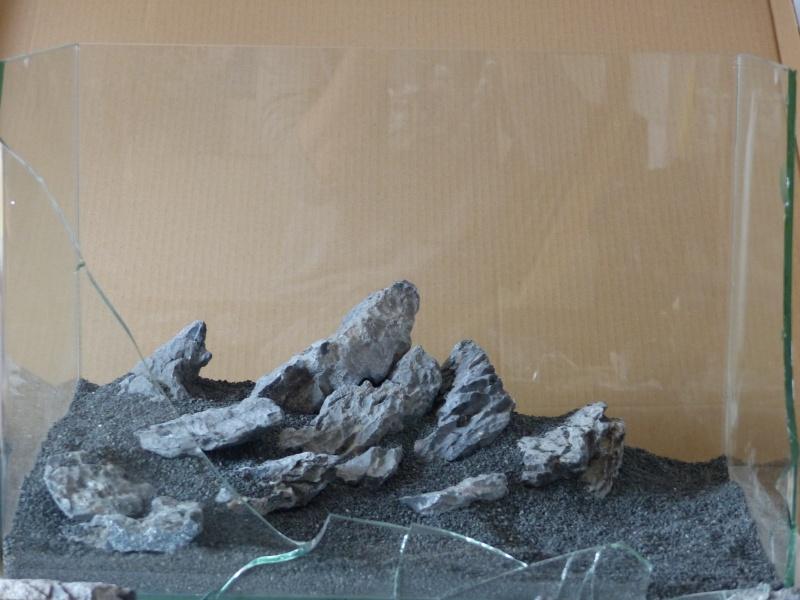 Mini-Rocheuses : Partie V - Rédemption  P1030612