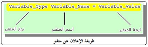 أنواع البيانات Types والمتغيرات والمترجم ميكروسى برو  418