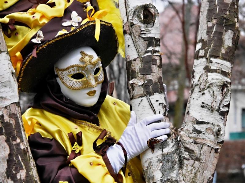 Carnaval Vénitien Annecy 20-21 février2016+ajout Photos P1100811