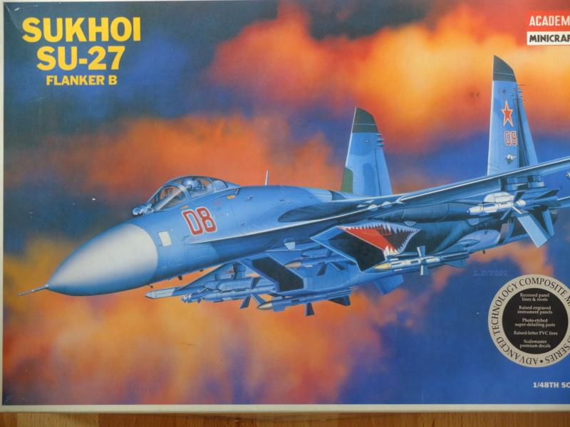 La Grue cendrée de Sukhoi... Dscf5111
