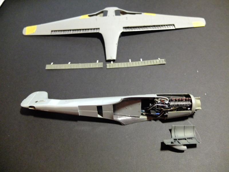 Les grandes ailes de Kurt Tank.... - Page 2 Dscf5429