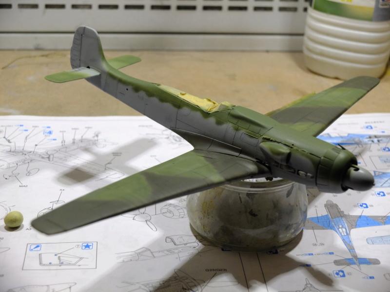 Les grandes ailes de Kurt Tank.... - Page 2 Dscf5510