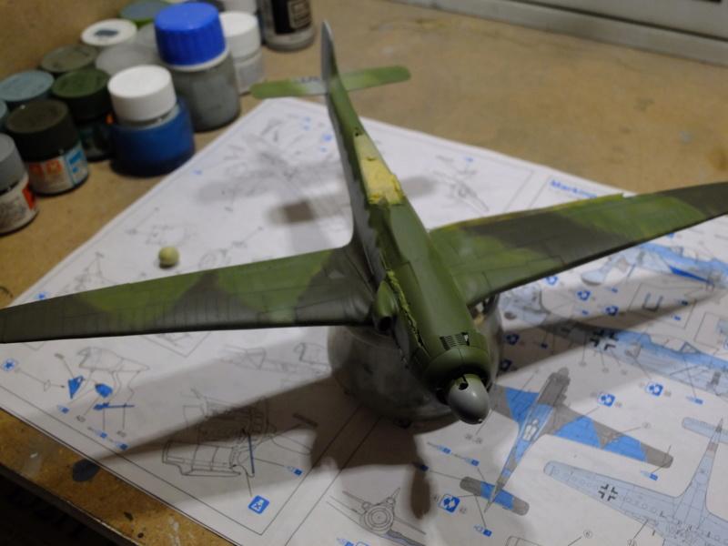 Les grandes ailes de Kurt Tank.... - Page 2 Dscf5511