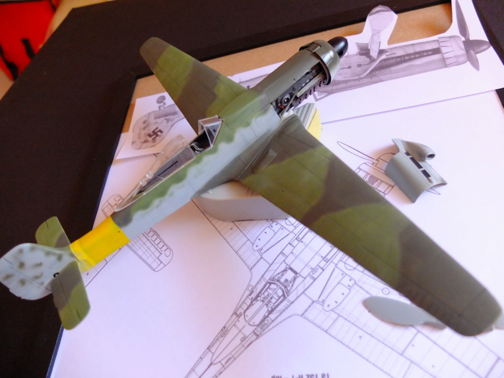 Les grandes ailes de Kurt Tank.... - Page 2 Dscf5512