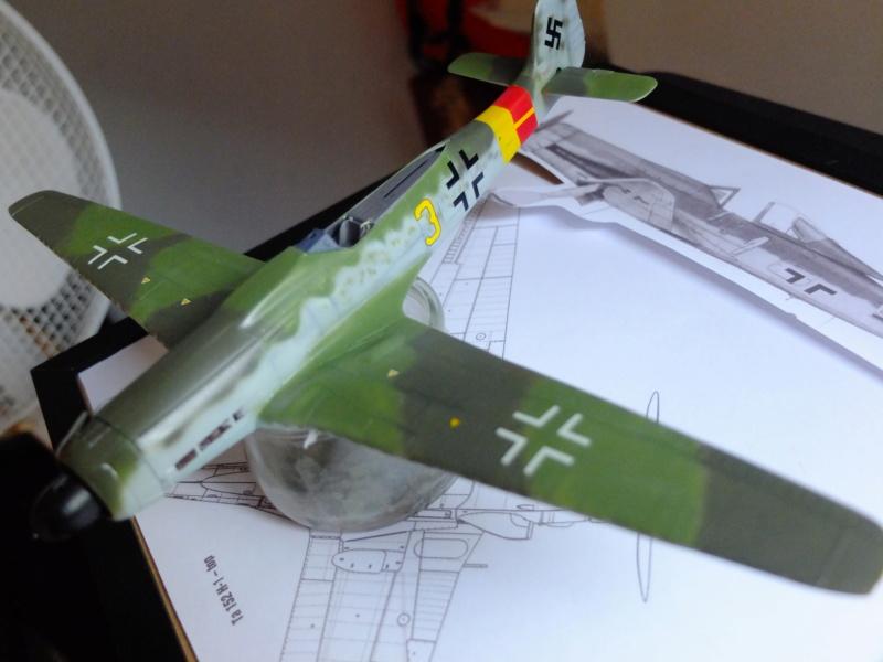 Les grandes ailes de Kurt Tank.... - Page 2 Dscf5515