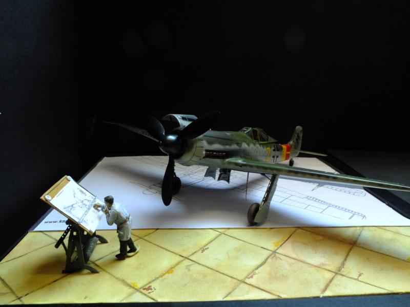 Les grandes ailes de Kurt Tank.... - Page 4 Dscf5616