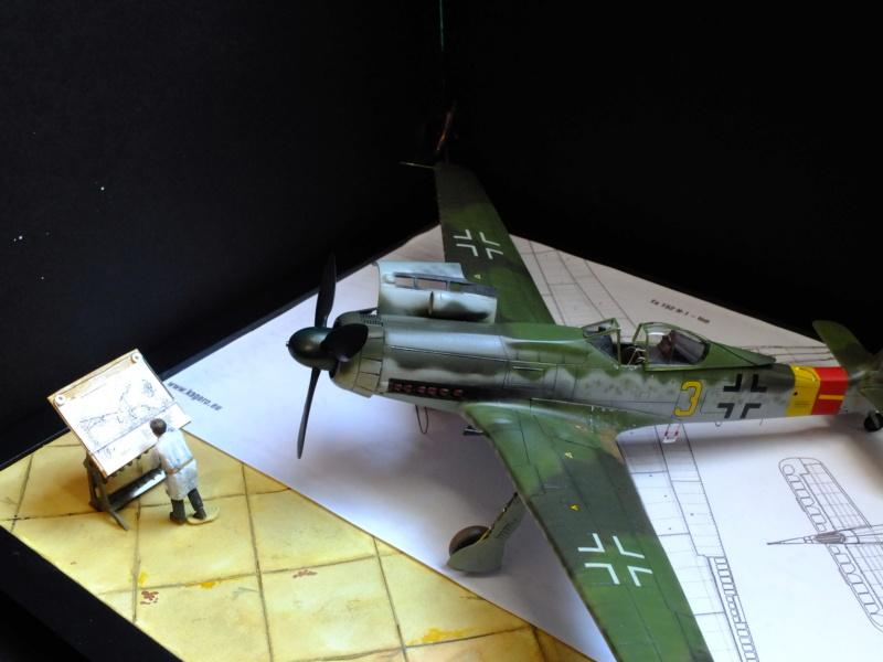 Les grandes ailes de Kurt Tank.... - Page 4 Dscf5618