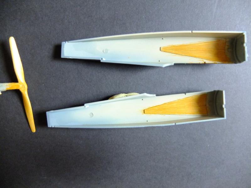 Le parasol de Fokker Dscf5623